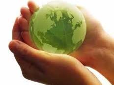 Contoh Artikel Lingkungan Hidup