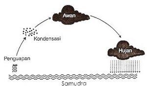 Siklus hujan sederhana