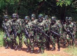 Pasukan keamanan merupkan salah satu komponen pelaksana fungsi negara yaitu sebagai penjaga keamanan